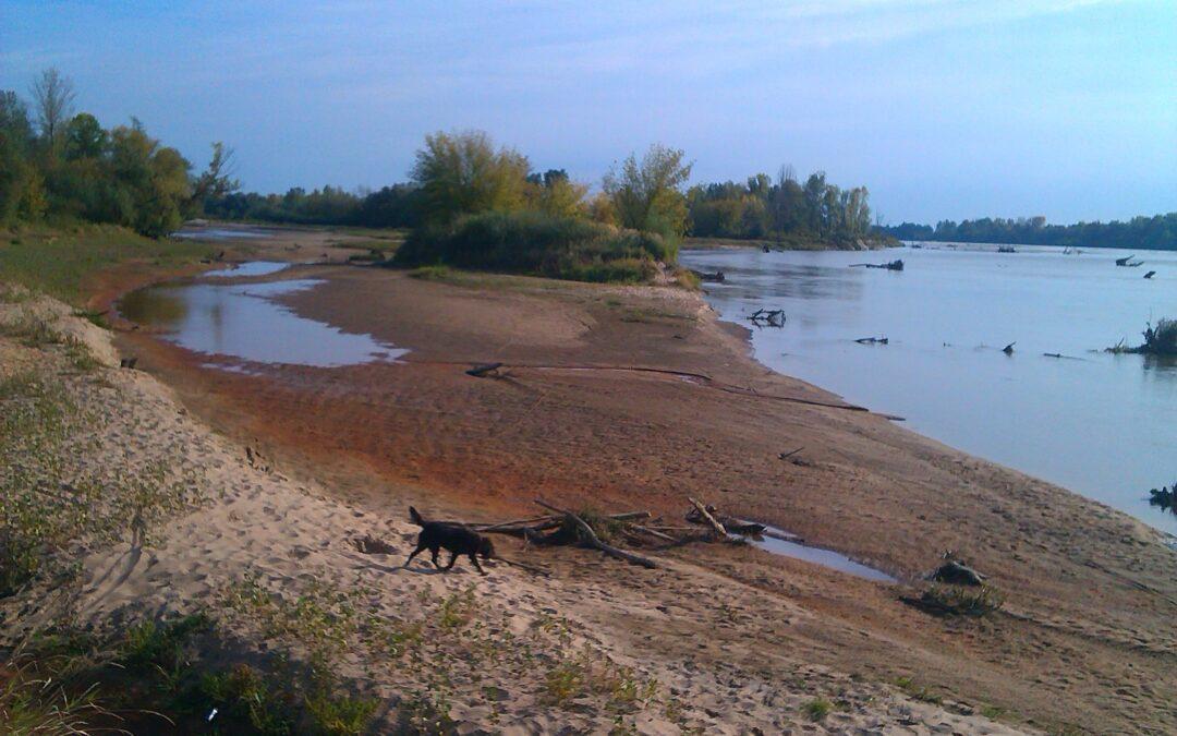 """Posprzątajmy po raz 5 Rezerwat Wyspy Zawadowskie, włączając się w akcję """"Sprzątanie świata""""- Clean Up the World"""