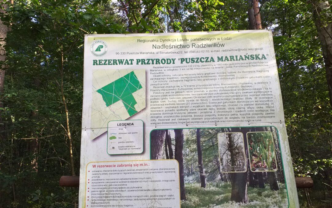 Czas na las to dla biednych też luksus.                      Rozmyślania po wizycie w  Puszczy Mariańskiej